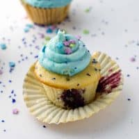 Night howler Cupcakes