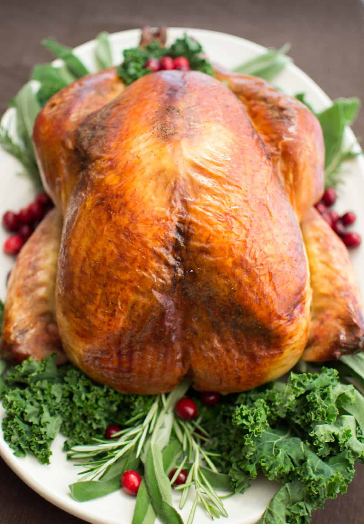 Apple Cider Brined Turkey