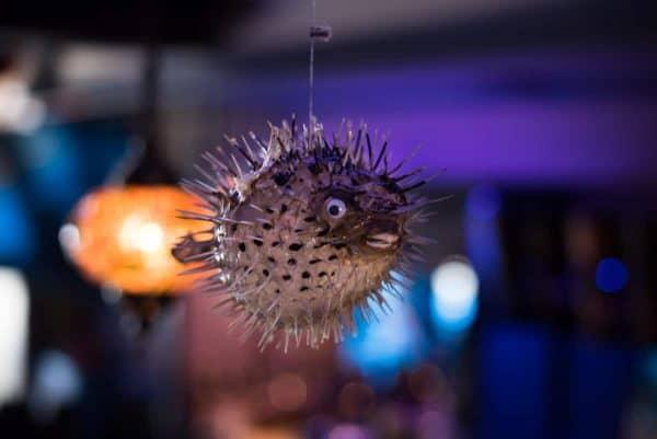Bonefish Harry's Interior Photos