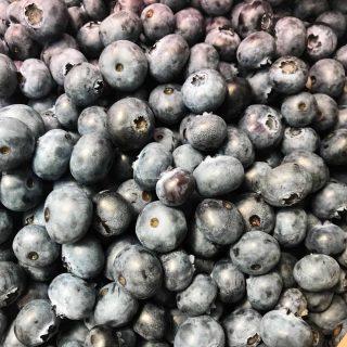 Harvey's Farm Pick Your Own Blueberries