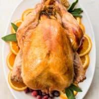 Overhead photo of roasted orange sage turkey brine