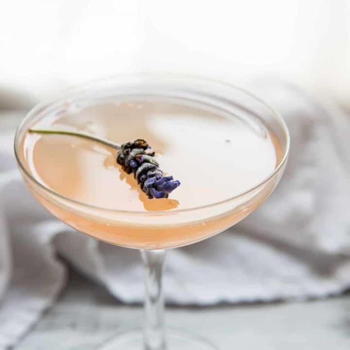 close up of a lavender flower cocktail garnish