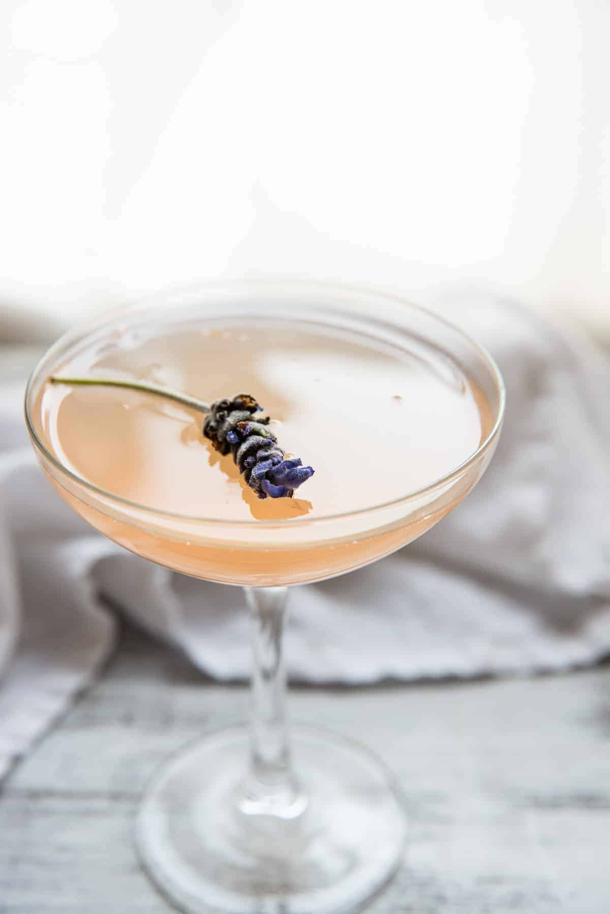close up of a lavender flower cocktail garnish