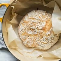 Roasted garlic no-knead bread freshly baked in a dutch oven