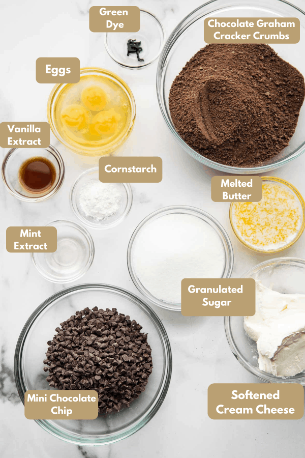 mint chocolate chip cheesecake ingredients