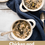 soup bowls of chicken soup