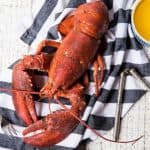 close up of boiled lobster