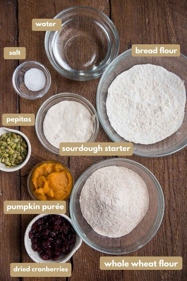 labeled ingredients for sourdough pumpkin bread