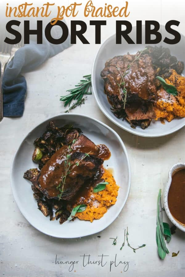 overhead of short ribs in wine sauce over sweet potato mash in a bowl