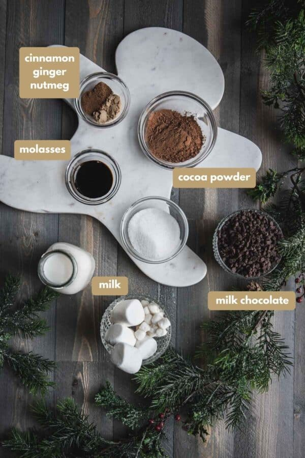 labeled ingredients for hot chocolate with gingerbread spices
