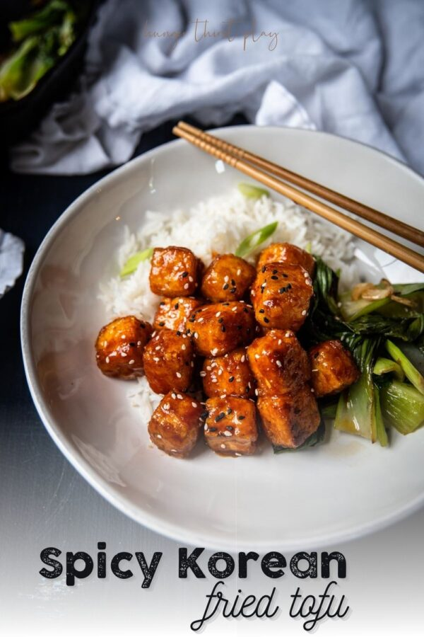 close up 45 degree angle shot of pan fried tofu with sweet fermented chili sauce
