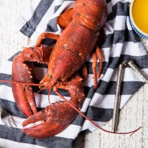 cooked lobster on a striped napkin